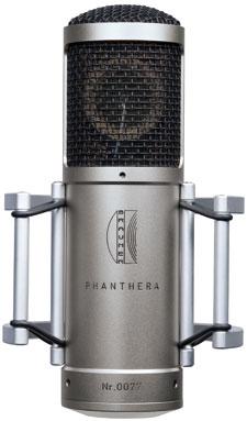 phanthera brauner